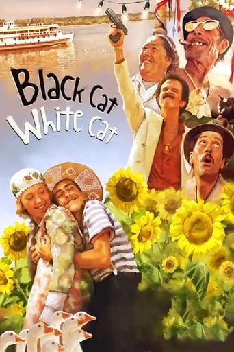 Poster of Black Cat, White Cat
