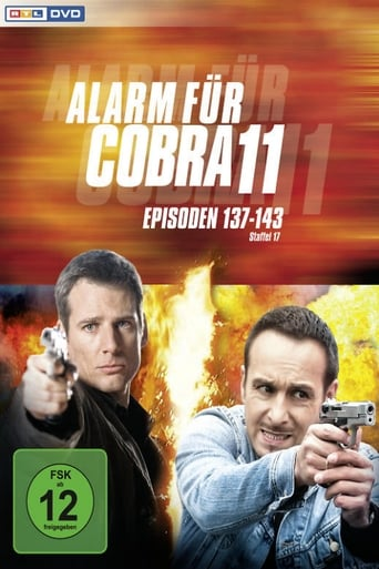 Staffel 19 (2007)