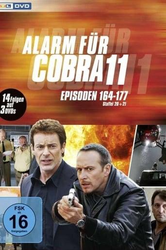 Staffel 22 (2008)