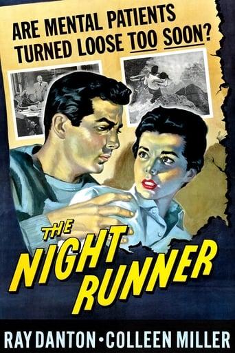 Poster of The Night Runner