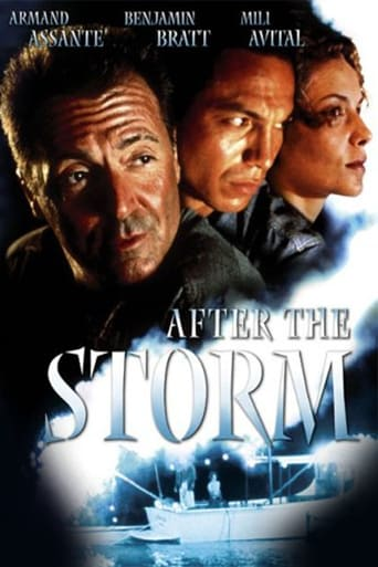Poster of After the Storm