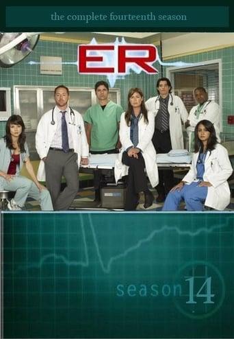 Saison 14 (2007)