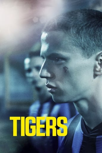 Poster of Tigers