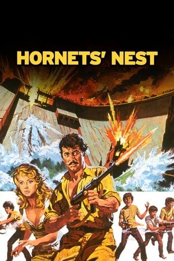 Poster of Hornets' Nest