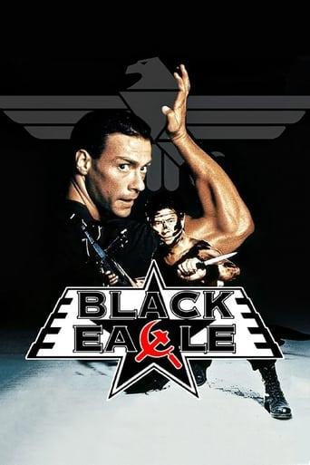 Poster of عقاب سیاه