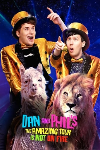 Poster of Dan and Phil's The Amazing Tour is Not on Fire