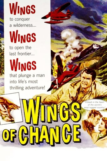 Poster of Wings of Chance