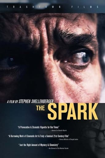 Poster of The Spark