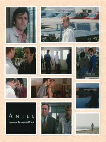 Poster of Aniel
