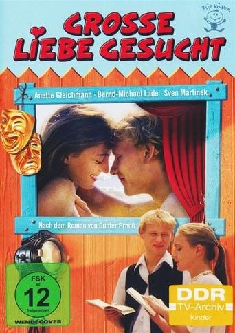 Poster of Große Liebe gesucht