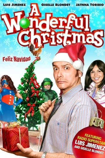 Poster of A Wonderful Christmas