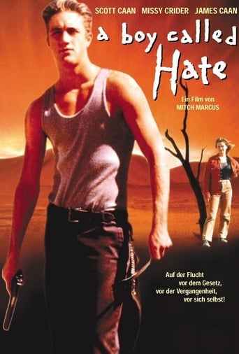 Poster of A Boy Called Hate