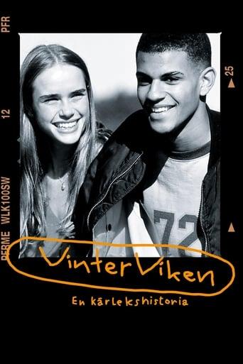 Poster of Vinterviken