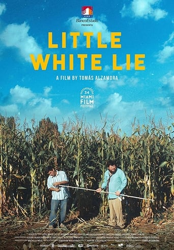 Poster of Little White Lie