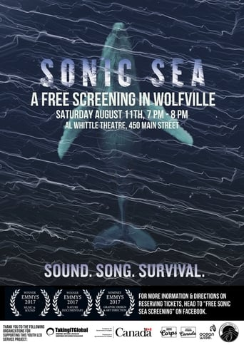 Poster of Sonic Sea