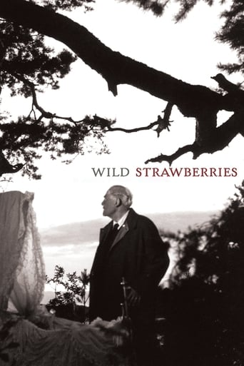 Poster of Wild Strawberries