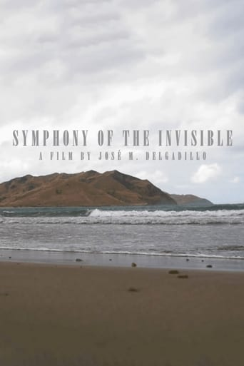 Poster of Symphony Of The Invisible