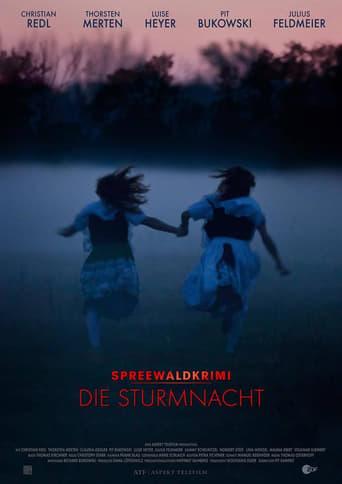 Poster of Spreewaldkrimi – Die Sturmnacht