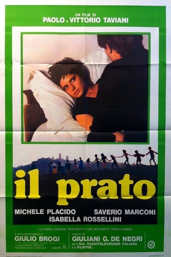 Poster of The Meadow