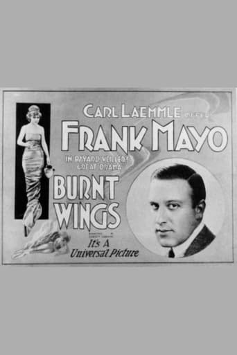 Poster of Burnt Wings