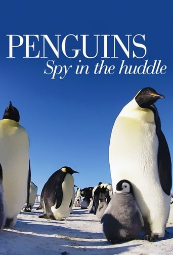 Poster of Penguins: Spy in the Huddle