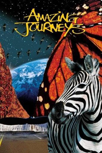Poster of Amazing Journeys