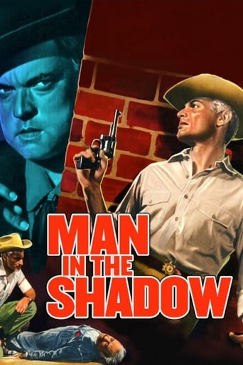 Poster of Man in the Shadow