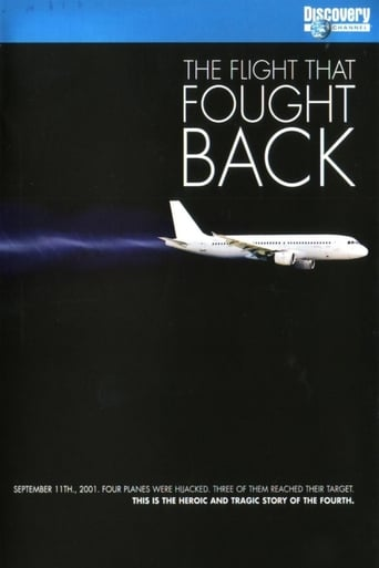 Poster of The Flight That Fought Back