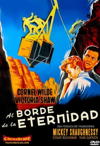 Poster of Al borde de la eternidad