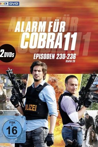 Staffel 31 (2013)
