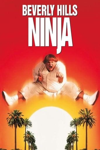 Poster of Beverly Hills Ninja