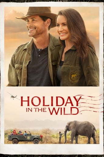 Poster of Holiday in the Wild