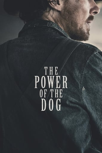 Poster of The Power of the Dog