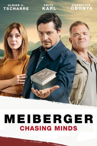 Poster of Meiberger: Chasing Minds
