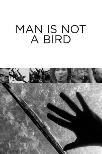 Poster of Man Is Not a Bird