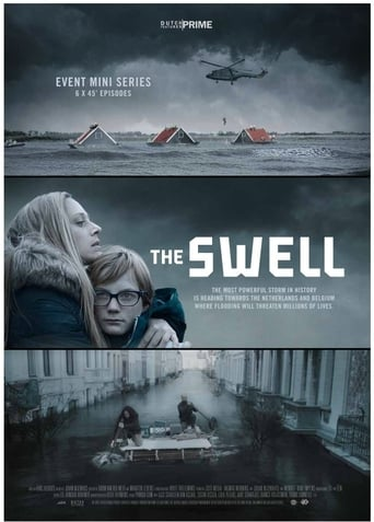 Poster of The Swell