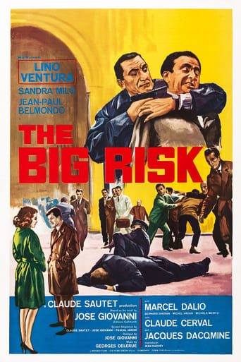 Poster of The Big Risk