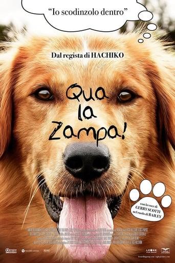 Poster of Qua la zampa!