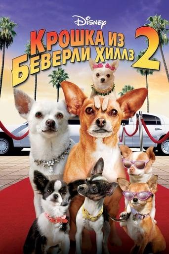 Poster of Крошка из Беверли-Хиллз 2
