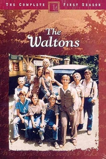 Poster of The Waltons