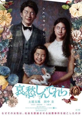 Poster of The Cinderella Addiction