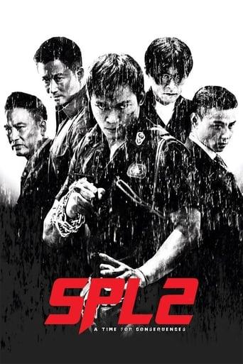 Poster of Kill Zone 2