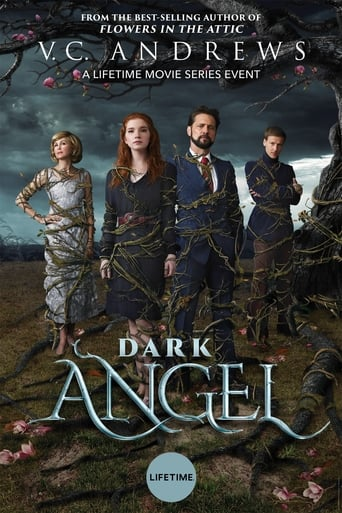 Image Dark Angel (TV)