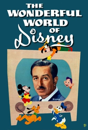 Poster of The Wonderful World of Disney