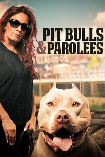 Play Pit Bulls and Parolees