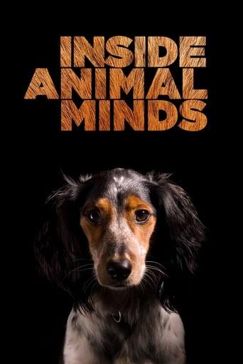 Poster of Inside Animal Minds