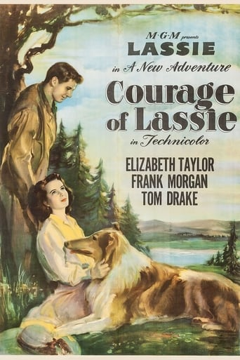 Poster of Courage of Lassie