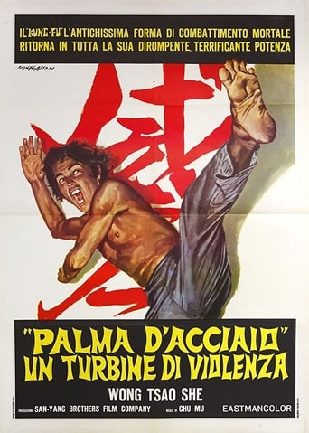 Poster of The Invincible Iron Palm