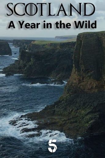 Poster of Scotland: A Year In The Wild