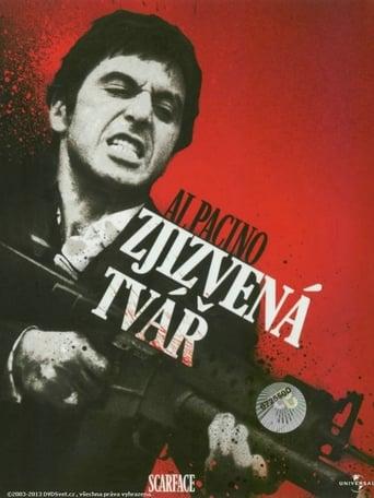 Poster of Zjizvená tvář
